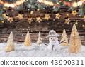 christmas, decoration, xmas 43990311