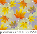 Autumn leaves, seamless pattern, vector background 43991558