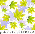Autumn leaves, seamless pattern, vector background 43991559