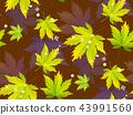 秋天 秋 无缝的 43991560