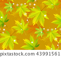 Autumn leaves, seamless pattern, vector background 43991561