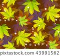 秋天 秋 无缝的 43991562