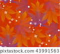 Autumn leaves, seamless pattern, vector background 43991563