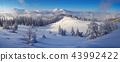 Winter Landscape 43992422