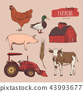 Farm set. Hand drawn illustration vector. 43993677