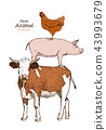 Farm animals. Isolated Vintage vector set . 43993679