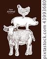 Farm animals. Isolated Vintage vector set . 43993680