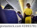 flying attendants ,air hostess 43993781
