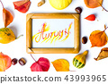 Autumn card in a frame with fallen leaves 43993965