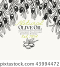 Olive tree banner template. Vector vintage illustration. Hand drawn engraved style background 43994472