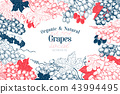 Grape berry frame template. Hand drawn vector fruit illustration. Engraved style vintage botanical 43994495
