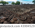 Taputapuatea Marae of Raiatea French polynesia  43994529