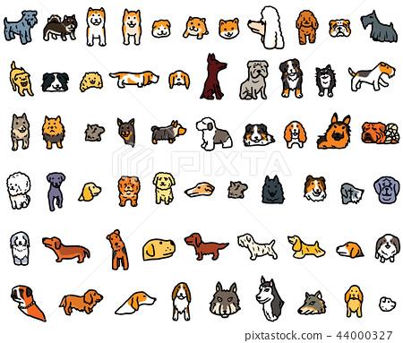 狗各種各樣的狗品種Shiba Inu多殼的玩具獅子狗 44000327