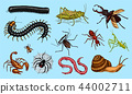 Big set of insects. Vintage Pets in house. Bugs Beetles Scorpion Snail, Whip Spider, Worm Centipede 44002711