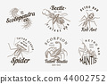 Set of insects logos. Vintage Pets labels for bar or tattoo studio. Bugs Beetles Scorpion Spider Ant 44002752