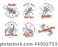 bug, beetle, scorpion 44002753
