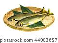 sweetfish, ayu, sieve 44003657