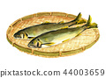 sweetfish, ayu, sieve 44003659
