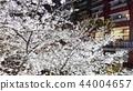 日本风景 44004657
