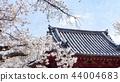 日本风景 44004683