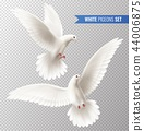 White Dove Set 44006875