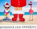 christmas, claus, dog 44008241