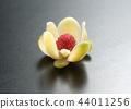 玫瑰花 44011256