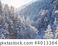 Beautiful winter landscape in the forest. 44013364