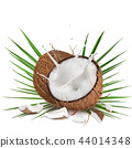 close-up of a coconuts with milk splash on white background 44014348