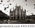Milan Cathedral Square pigeon 44014393