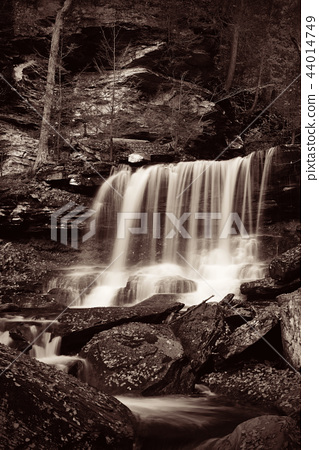 Waterfalls in black and white 44014749