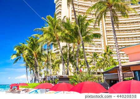 Hawaii Waikiki Beach Palm Trees And Hotel Town Stock