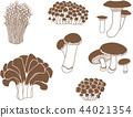 蘑菇 44021354