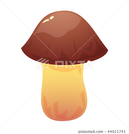 Suillus edible mushroom, vector illustration 44021741