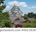 名古屋城堡和本丸宮(愛知縣)2018年8月 44021838