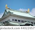 Kinuta(名古屋城堡)愛知縣 44022057