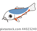 fish, fishes, colored 44023240
