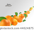 Creative concept with flying apricots and leaves. Whole falling isolated on white background 44024875