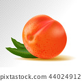 Realistic Ripe Peach with Leaf on White Background, Isolated Sweet Fruit, 3D Hand Drawn Vector 44024912
