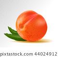 ลูกพีช,ผลไม้,3 44024912