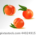 Peach. Sweet fruit. 3d vector icons set. Realistic illustration 44024915