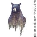 bear, double, exposure 44029276