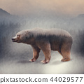 Double exposure of a wild bear and a pine forest 44029577