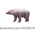 Double exposure of a wild bear and a pine forest 44029578