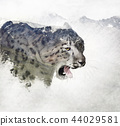 Double exposure of a snow leopard and mountains 44029581