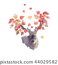 Deer male with autumn leaves 44029582