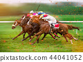 Race horses with jockeys on the home straight 44041052