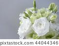 꽃꽂이, 꽃다발, 부케 44044346