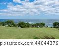 Species coast 44044379