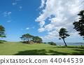 landscape, scenery, scenic 44044539